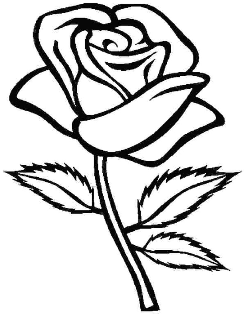 free rose coloring pages printable