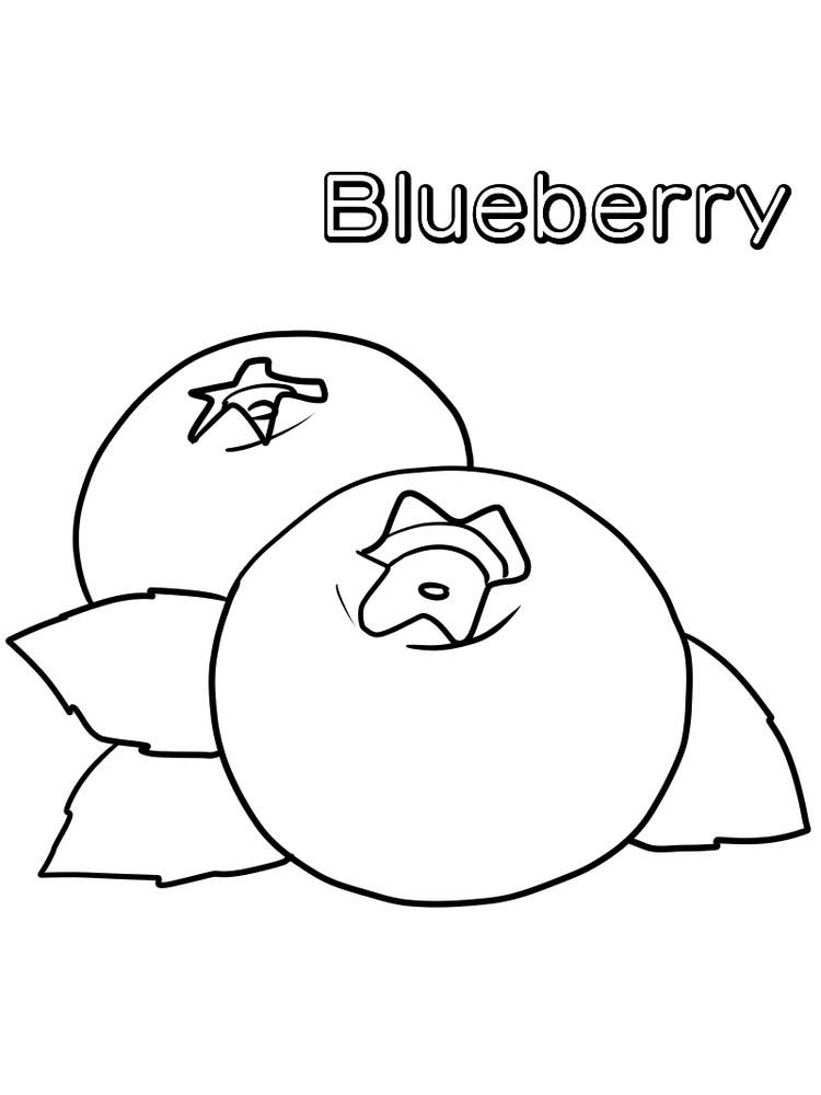 image blueberry coloring page free