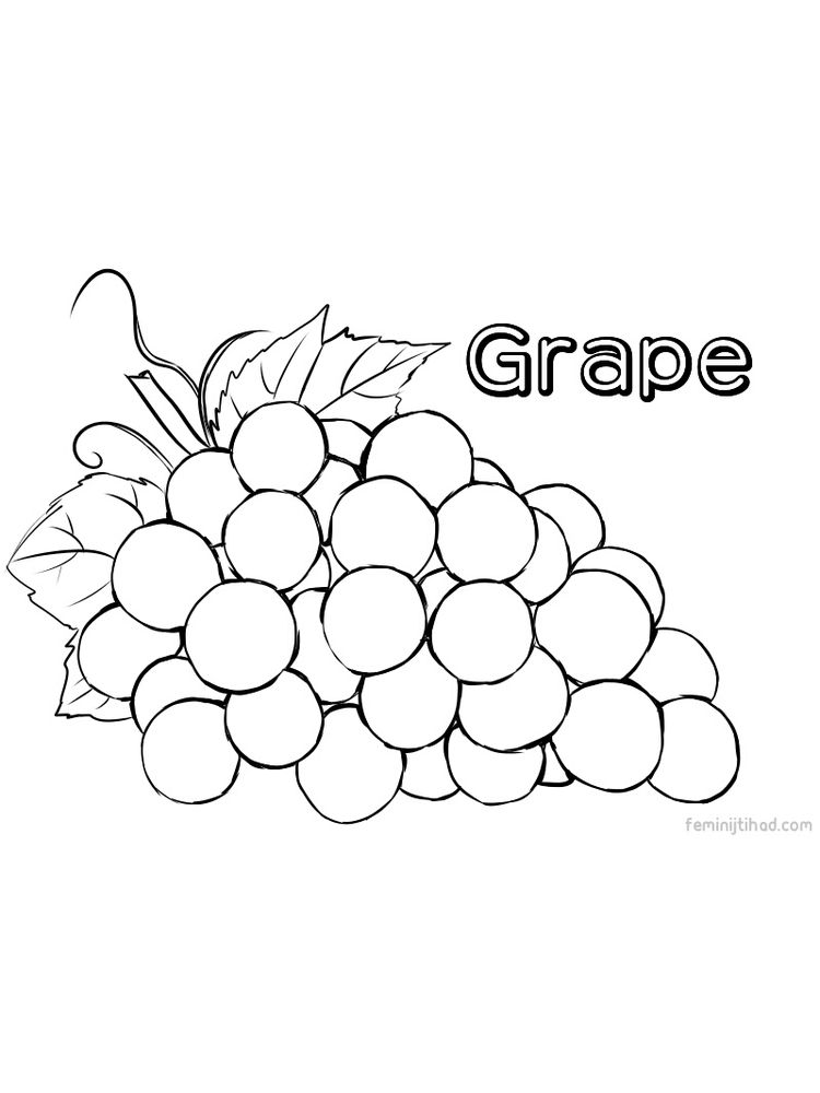 printable grape coloring images free download