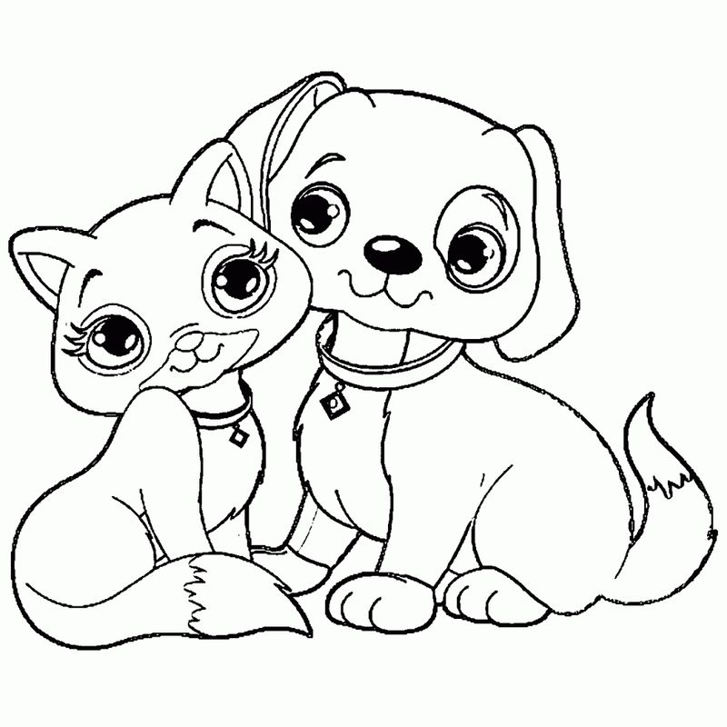 puppy kitten coloring pages