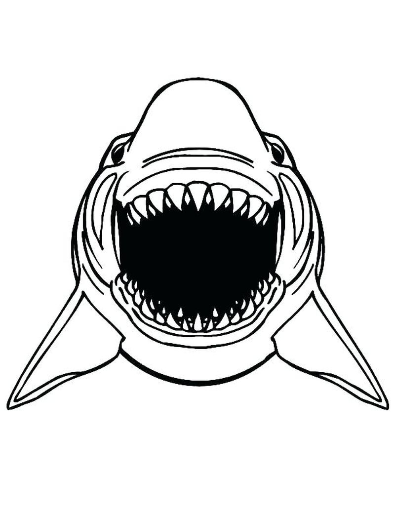 real shark coloring pages