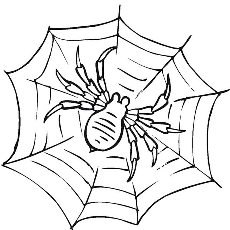 All Spiderman Coloring Pages 1