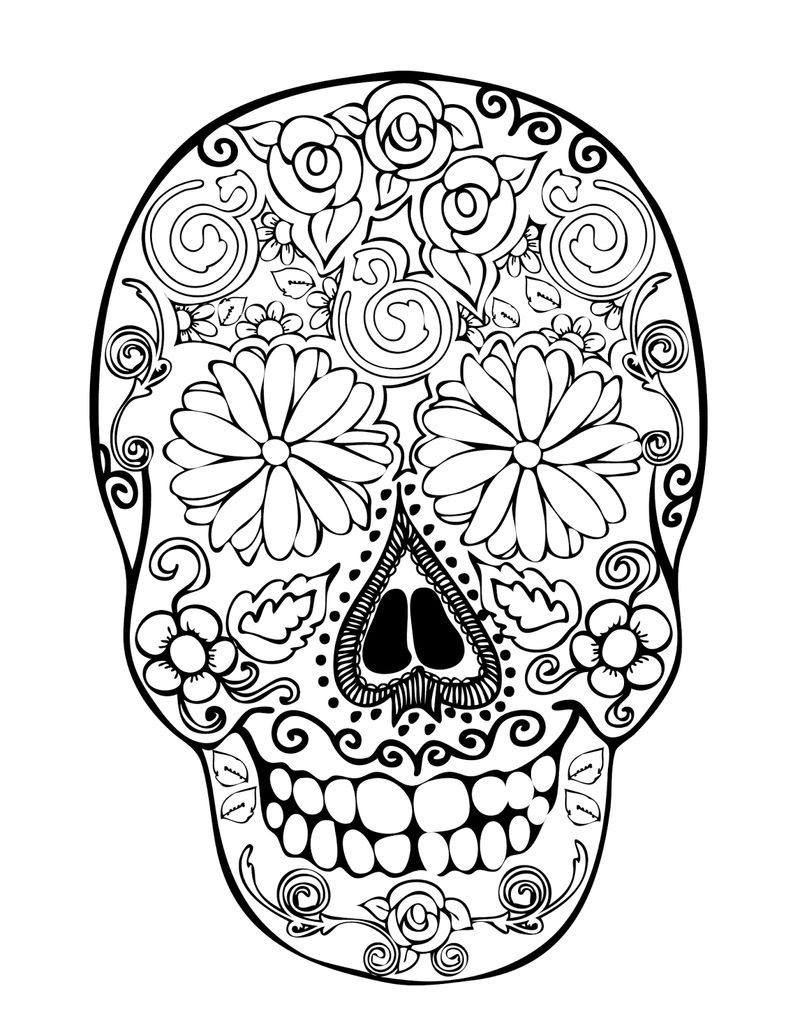 Anatomical Skull Coloring Pages