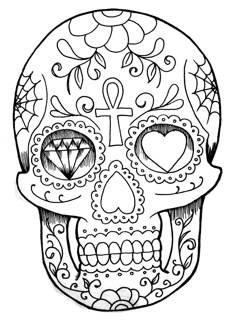 Anatomy Skull Coloring Pages To Print