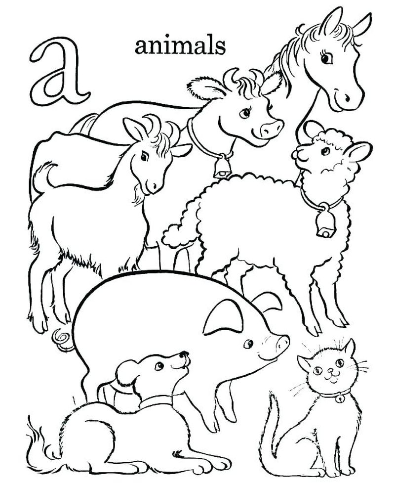 Animal Jam Coloring Pages Bunny Free