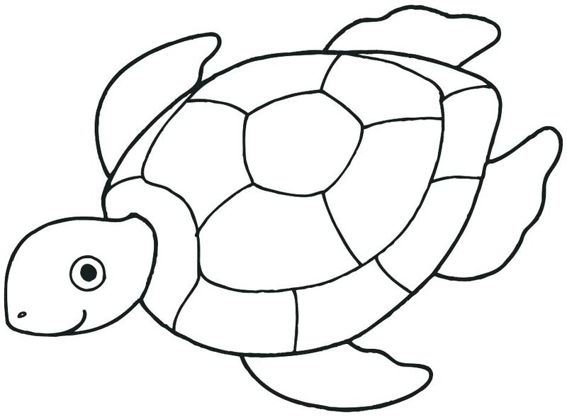 Baby Animal Coloring Pages For Teens Free