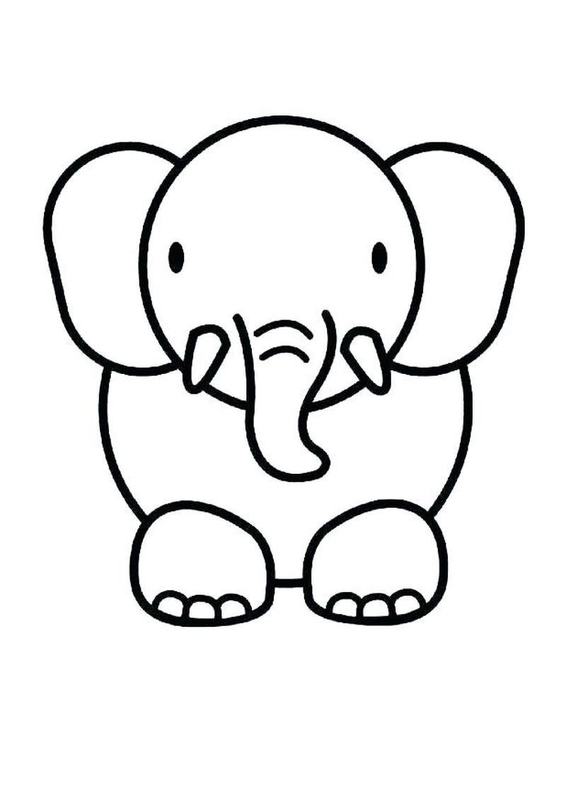 Baby Animal Coloring Pages Free Printables