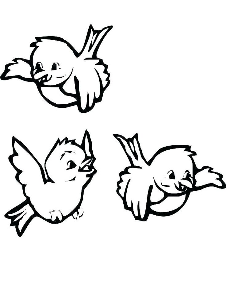 Baby Animal Coloring Pages Images
