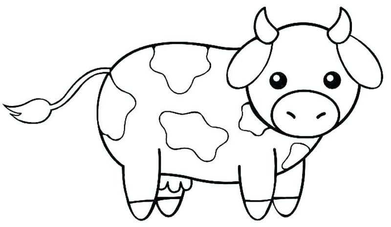 Baby Animal Coloring Pages Printables