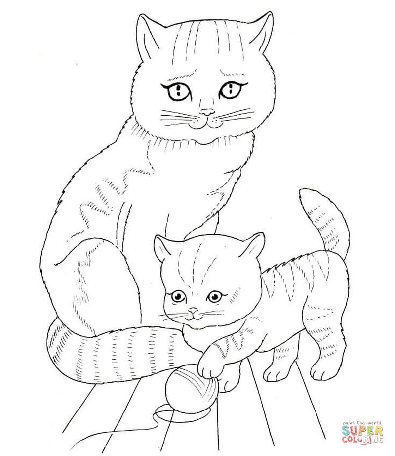 Baby Animal Picture Coloring Pages