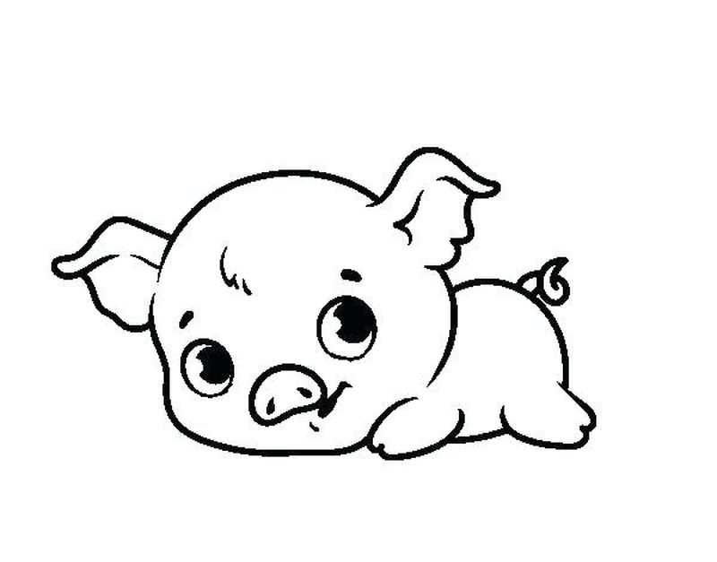 Baby Porky Pig Coloring Pages