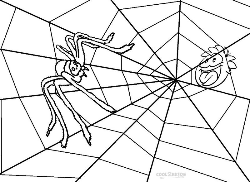 Baby Spider Coloring Pages