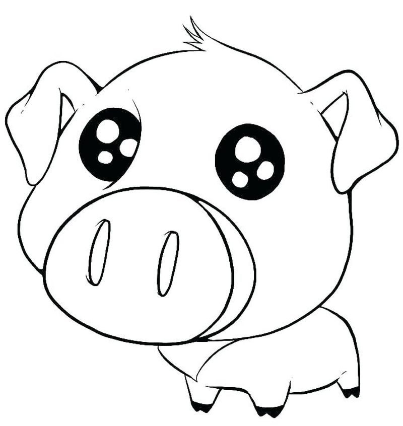 Baby Woodland Animal Coloring Pages