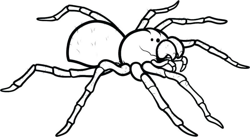 Black Spiderman Coloring Pages 1