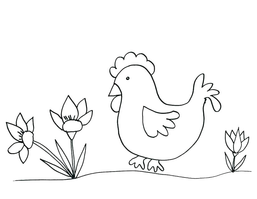 Chicken Coloring Pages For Grown Ups