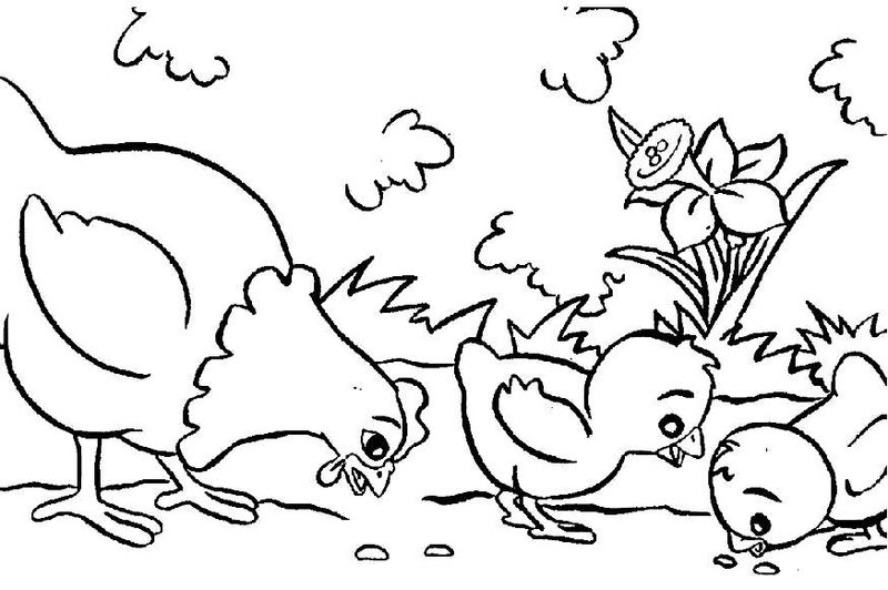 Coloring Pages On The Farm