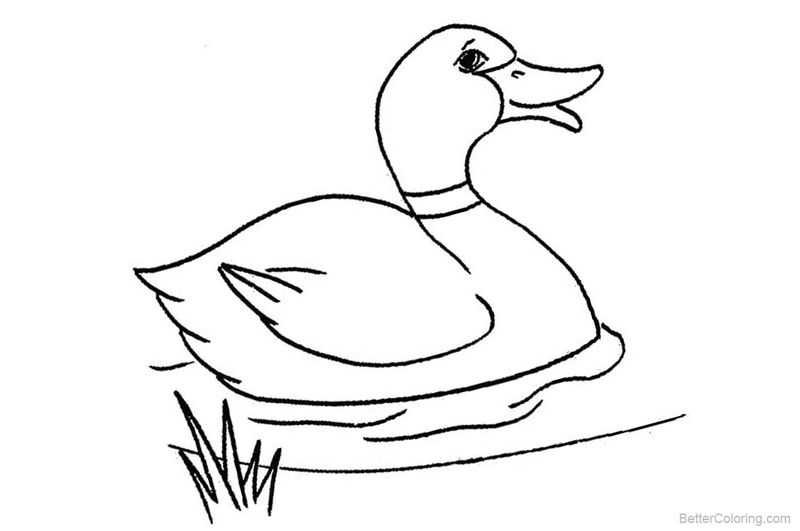 Donald Duck Coloring Pages Pdf