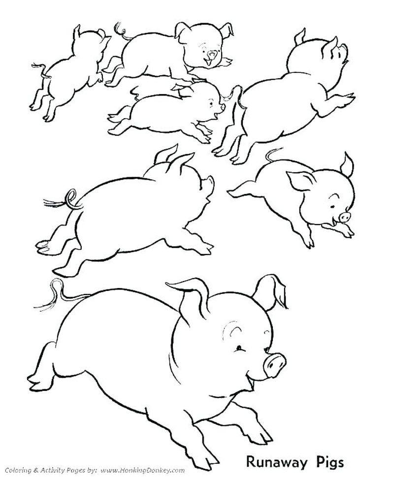 Farm Coloring Pages For Kids Printable