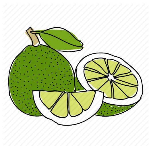 Lime Fruit Coloring Page