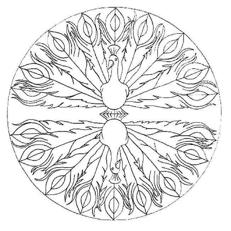 Peacock Coloring Pages Ideas