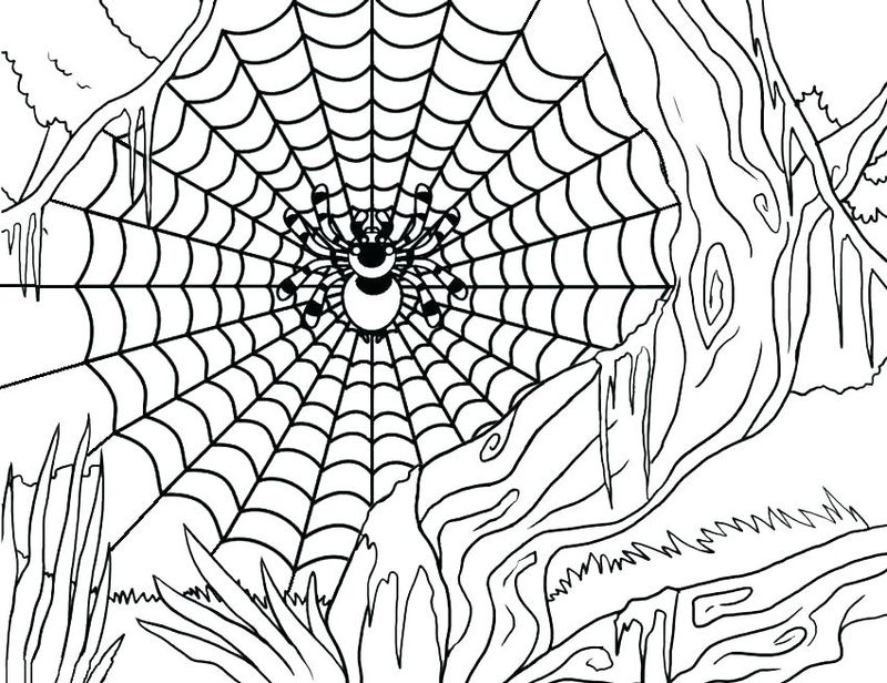 Spider Coloring Pages Halloween