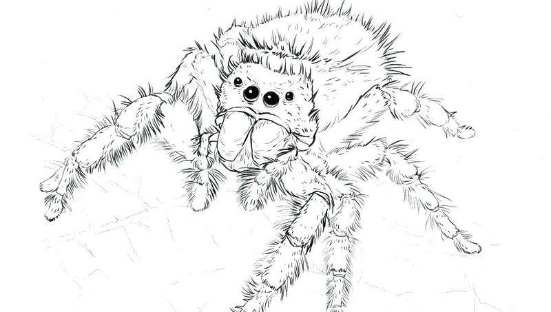 Spider Man Comic Book Coloring Pages 1