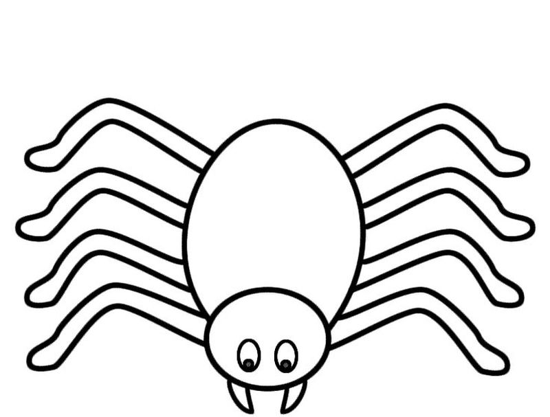 Spiderman Coloring Pages For Adults 1