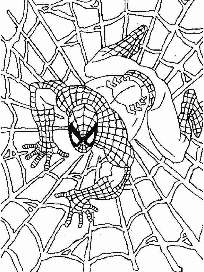 Spiderman Coloring Pages Logo