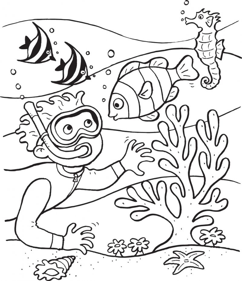 arctic ocean coloring pages