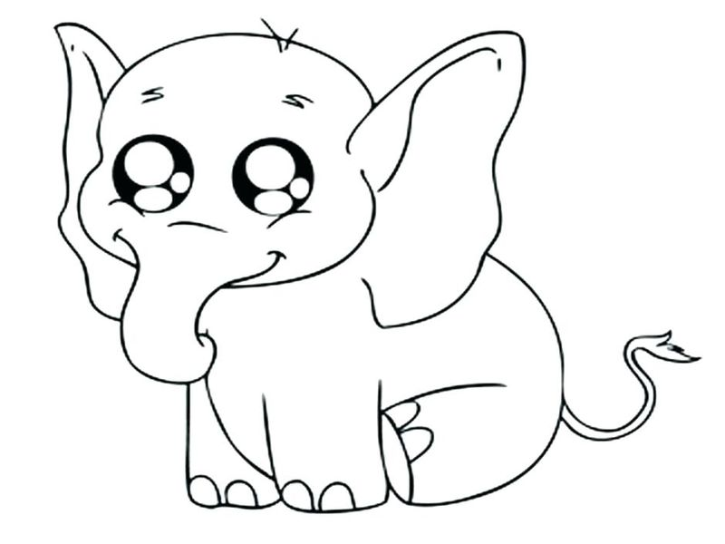 baby animal coloring pages free