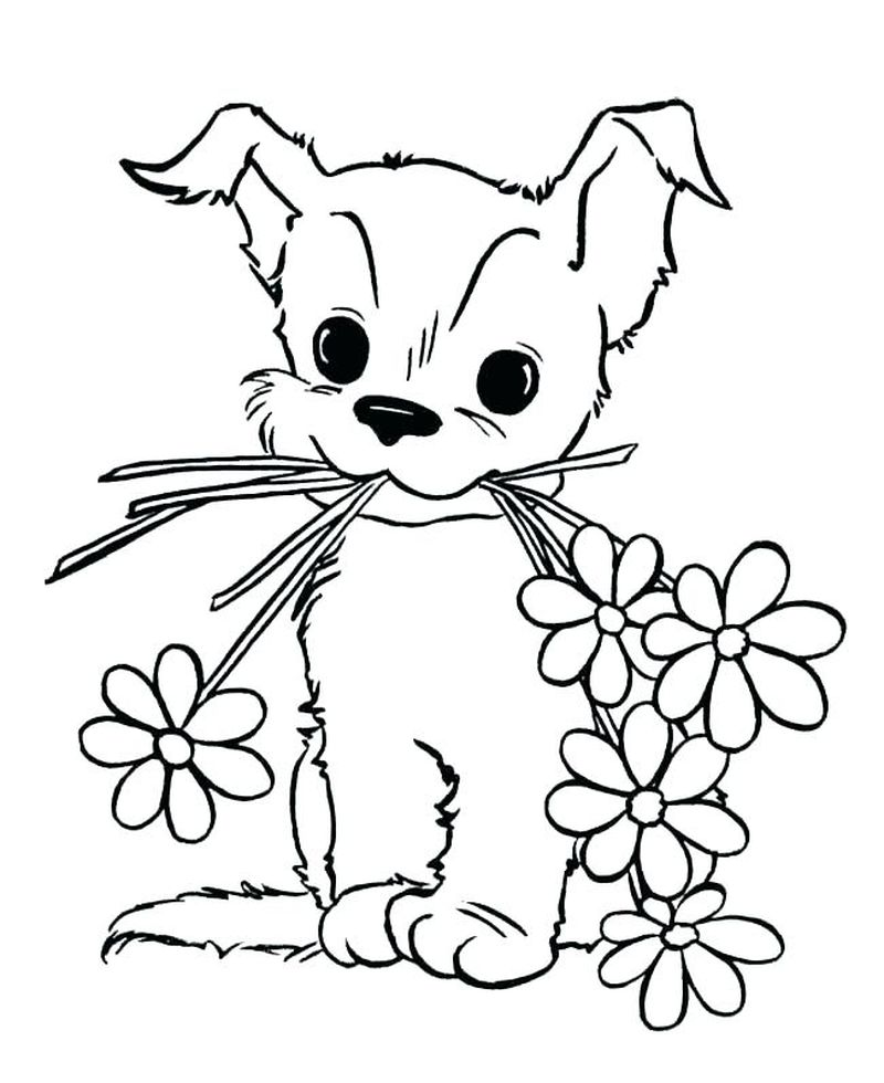 baby animal pictures coloring pages