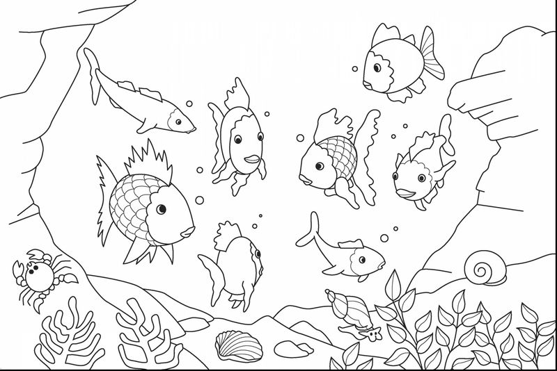 black and white ocean coloring pages