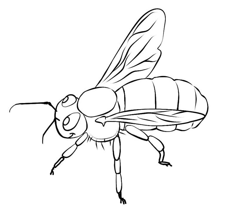 bumblebee car coloring pages