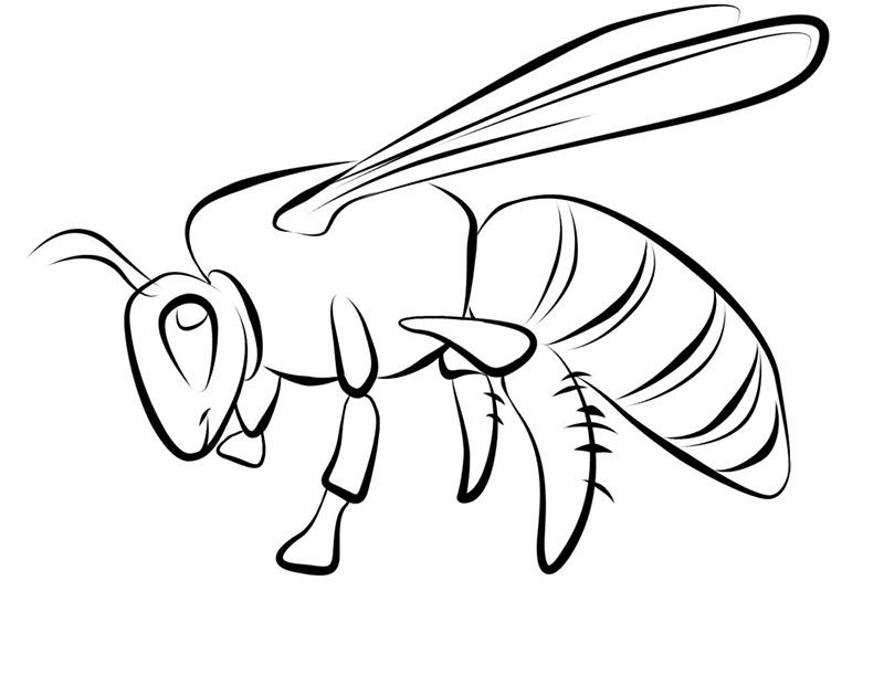 buzz bee coloring pages