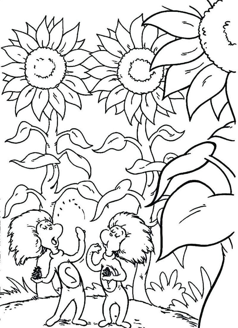 cat in the hat coloring pages for preschool