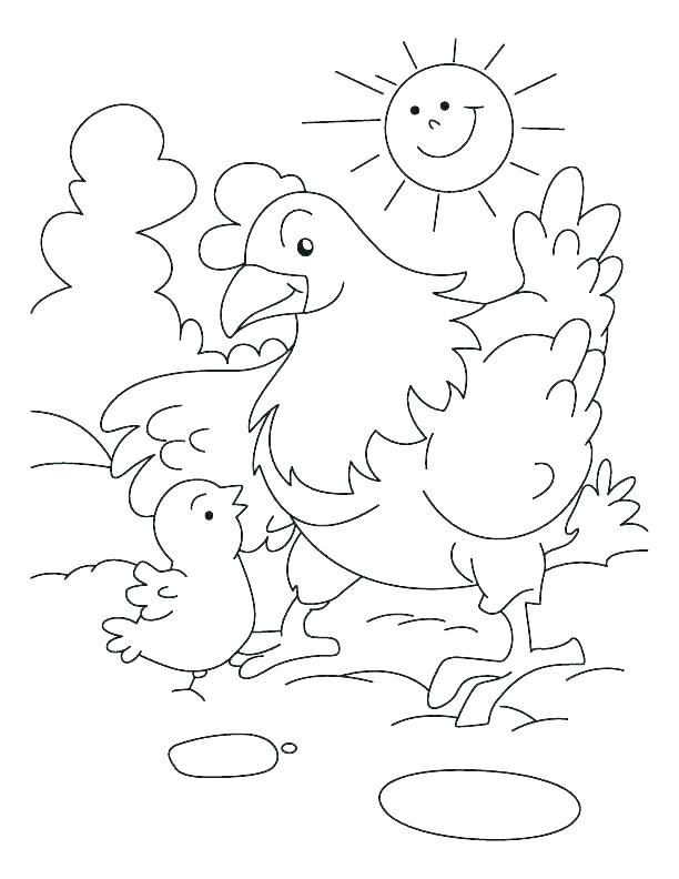 chicken and eggs coloring pages