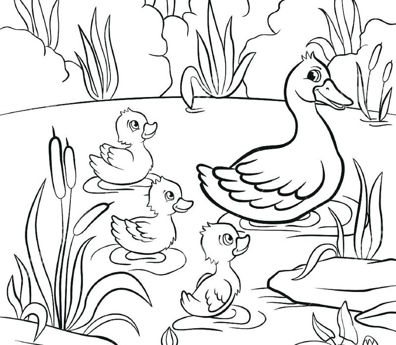 classic donald duck coloring pages