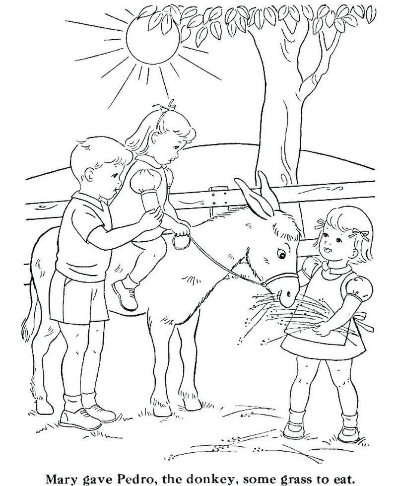 coloring pages a farm