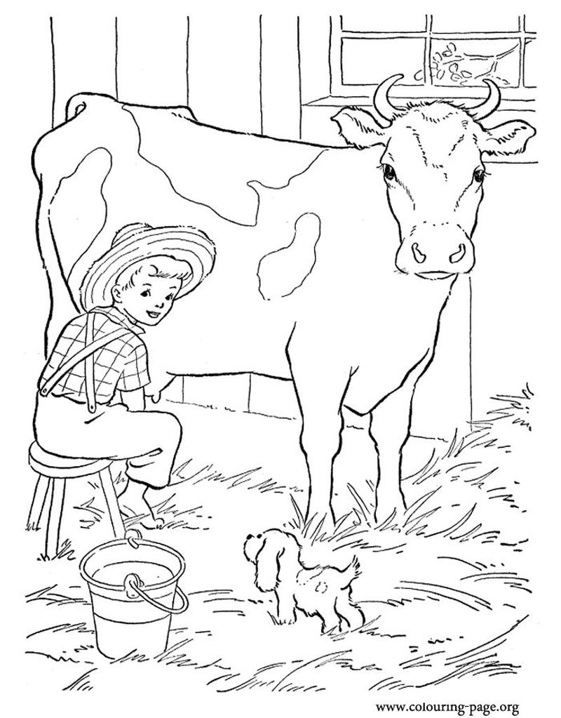 coloring pages baby farm animals