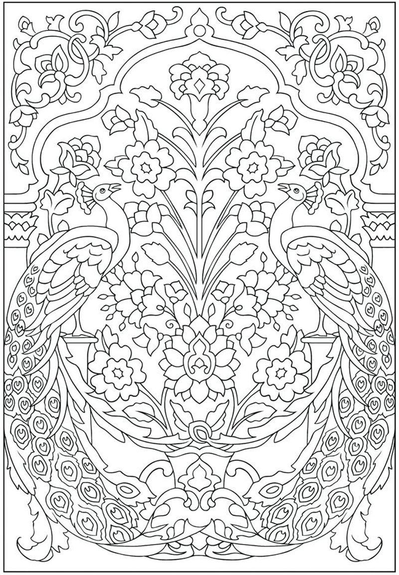 coloring pages for peacock