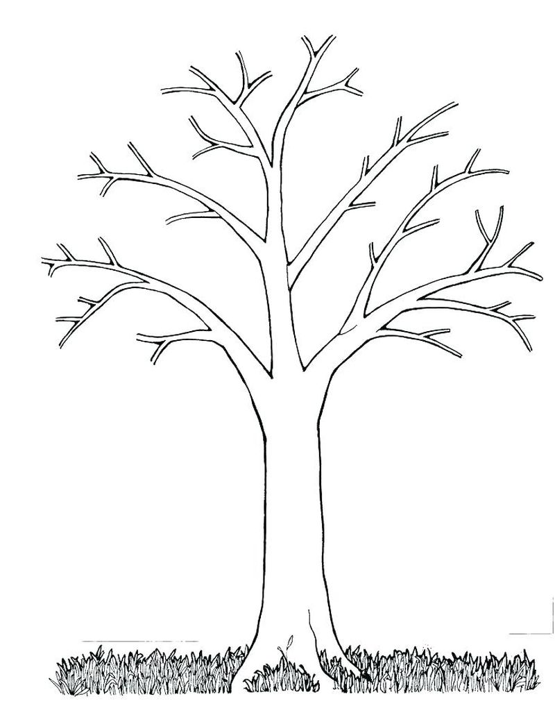coloring pages of tree