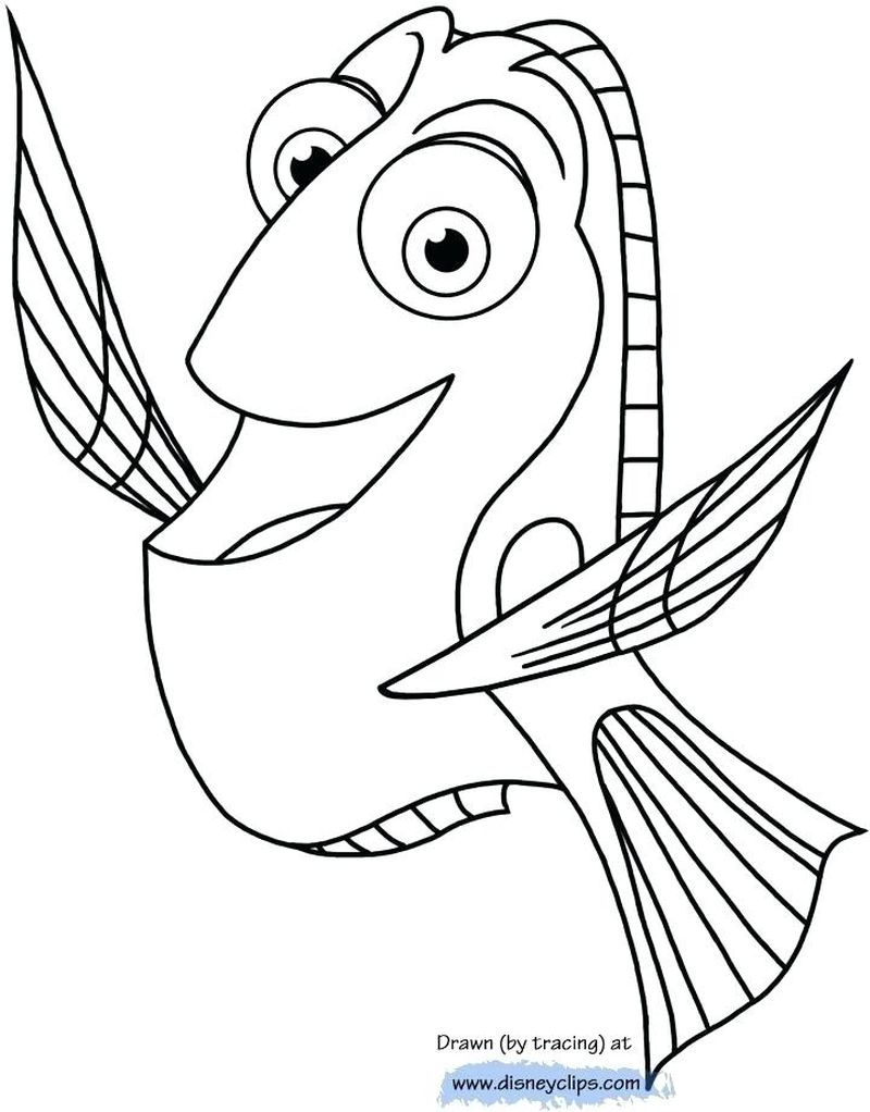 crayola finding dory coloring pages
