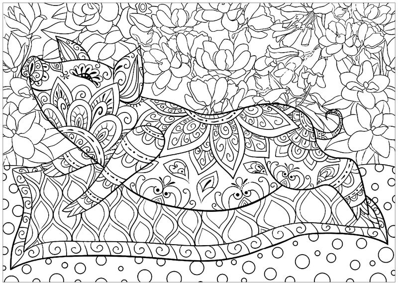 dancing pig coloring pages