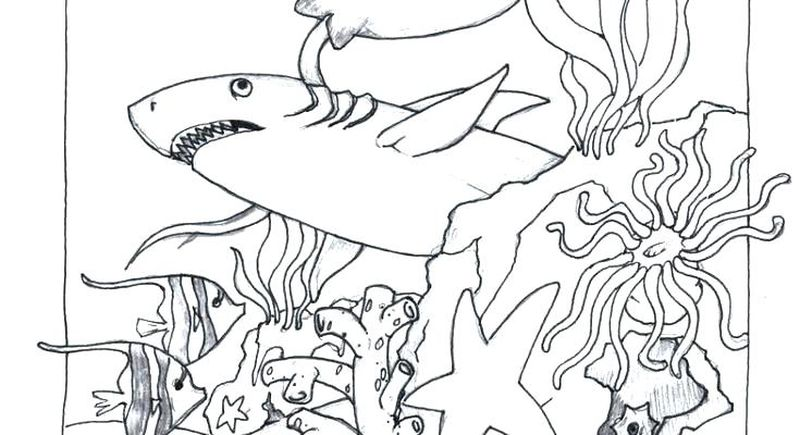 detailed ocean coloring pages