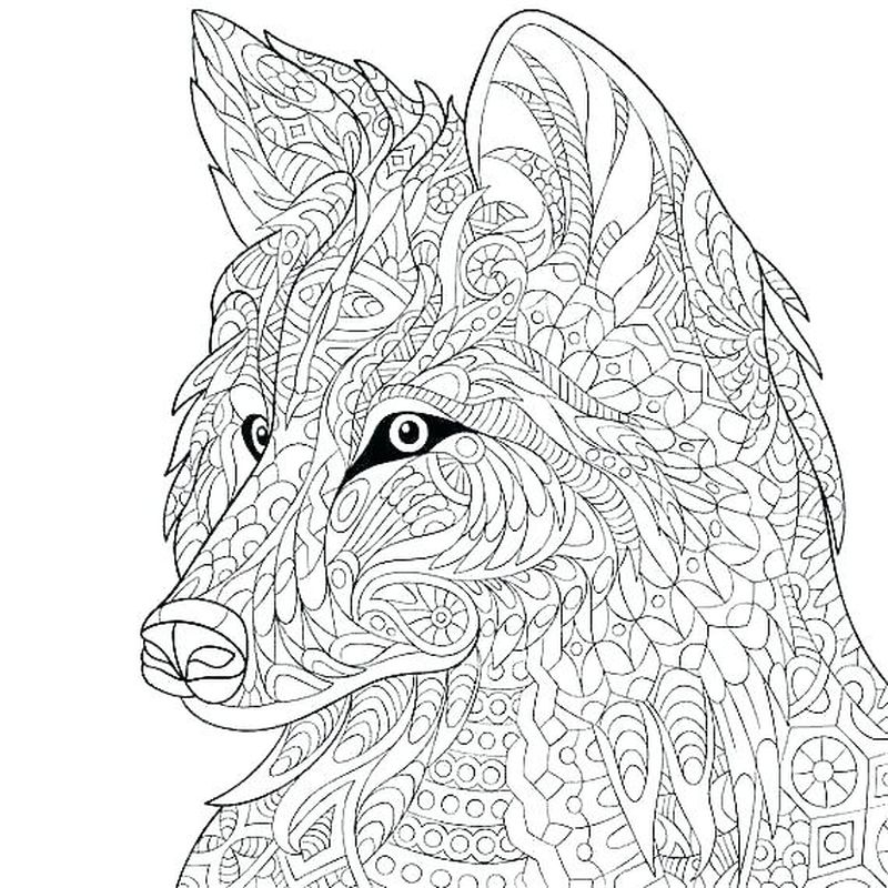 detailed wolf coloring pages pdf