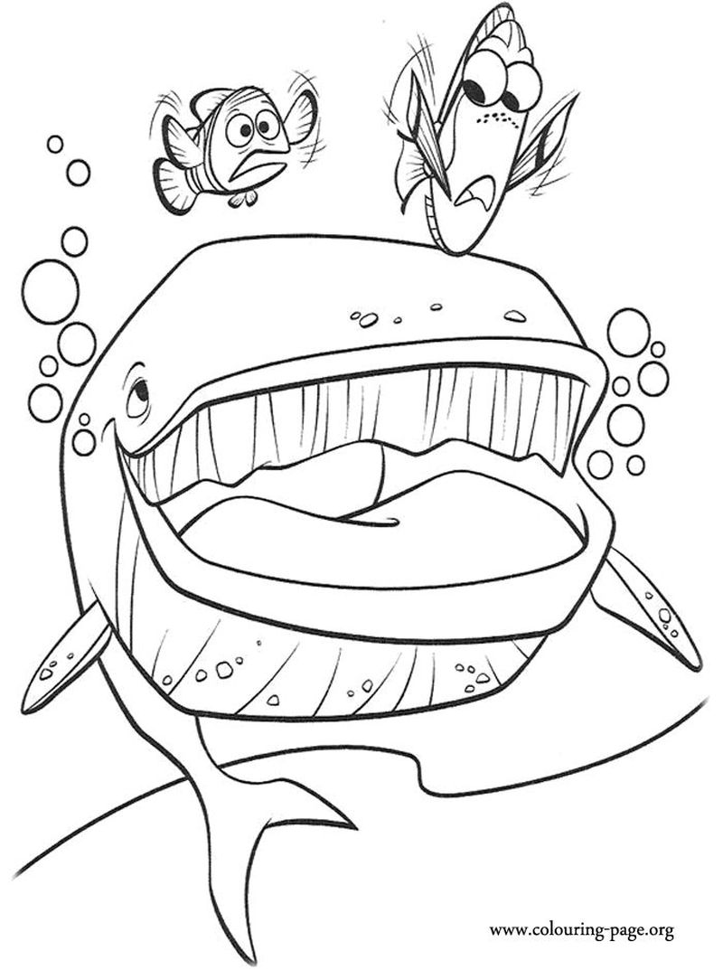 disney finding dory coloring pages