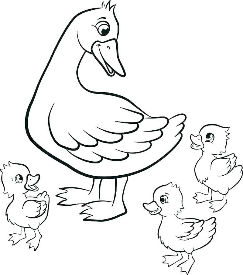 duck coloring pages