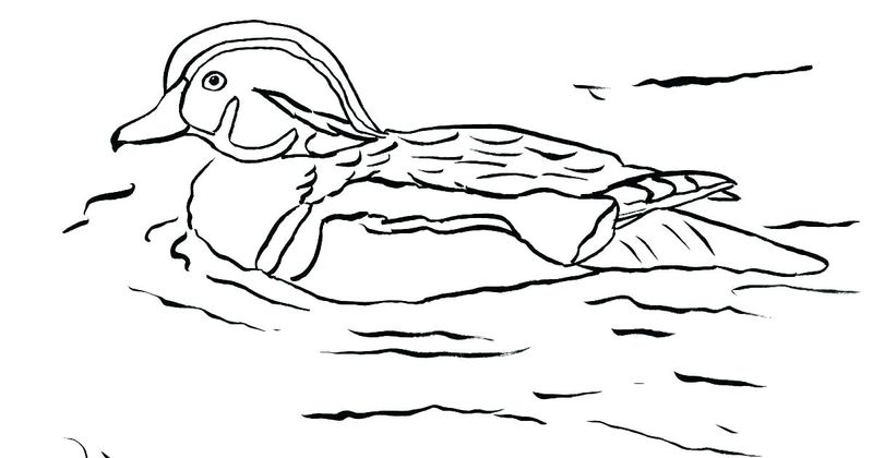 duck on a bike coloring pages