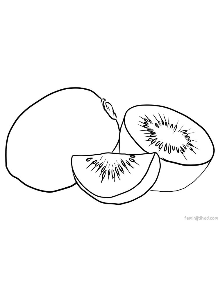 easy kiwi picture download free