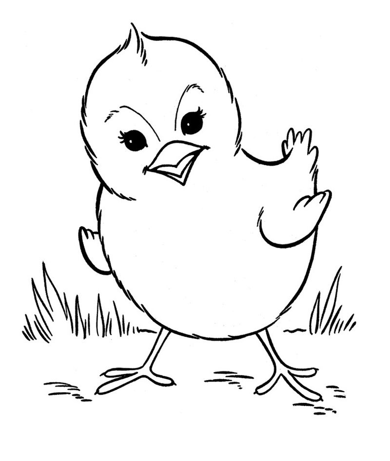 farm animal coloring pages to print out